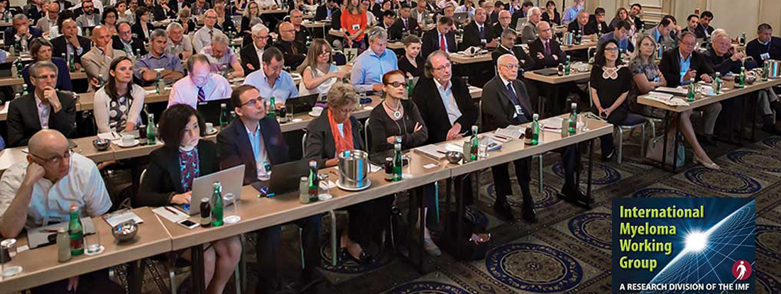 Large audience made up of the IMF's International Myeloma Working Group (IMWG)