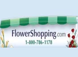 """""""flower shopping logo"""""""