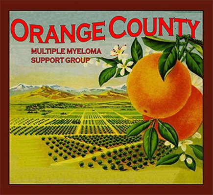 orange county support group logo