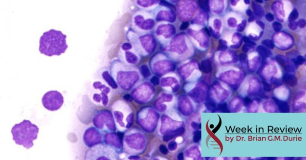 Myeloma Cells Under Microscope
