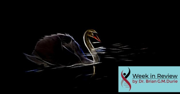 Creative photo filter creates this striking image of a dark swan on black water