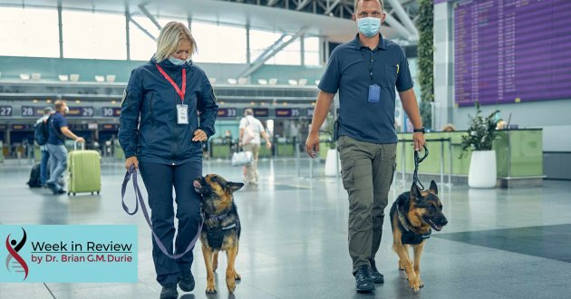 airport with security and covid screening dogs