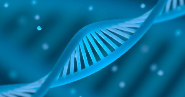Depiction of a DNA Stand