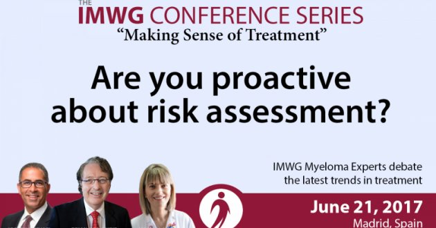 IMWG Summit Madrid 2017: Being Proactive About Risk Assessment