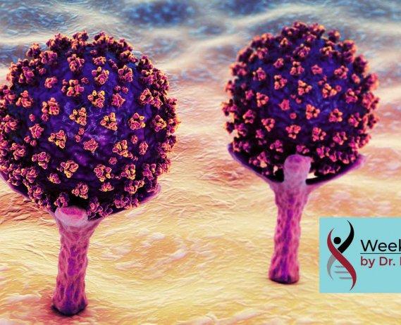 covid 19 virus cells