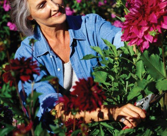 women in flower garden
