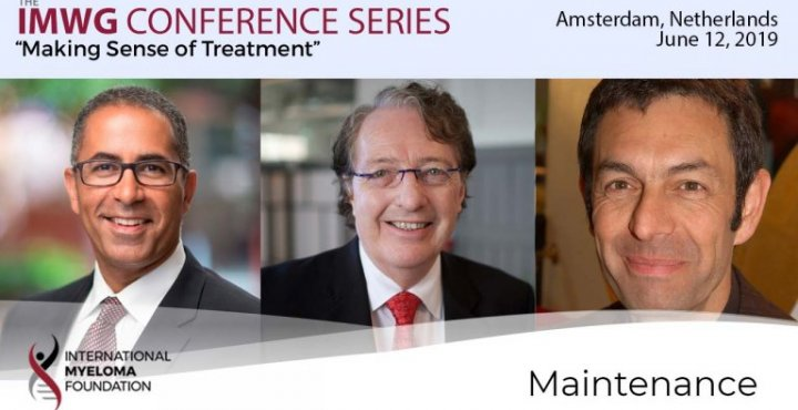 title card for IMWG conference series Amsterdam 2019 Maintenance